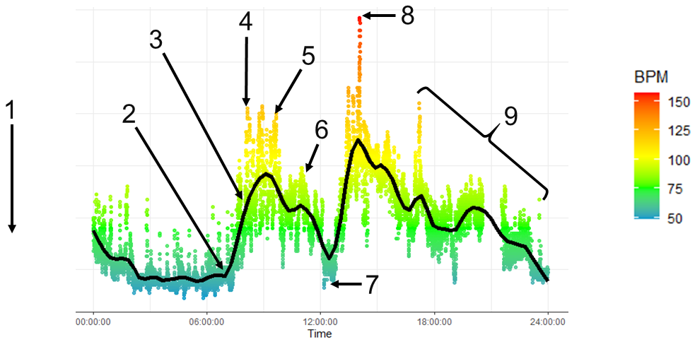A graph of my heartrate during the Trop Con incident. Sharp spikes are shown in the morning and early afternoon (explanation below).